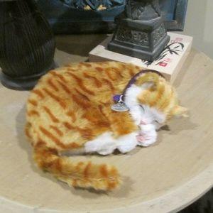 Perfect Petzzz Orange Tabby Kitty Cat Breathing